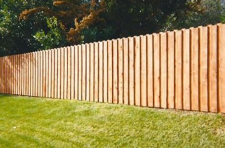 To fence or not to fence?
