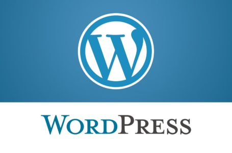 The WordPress and SquareSpace Wrestle: Which One Wins?